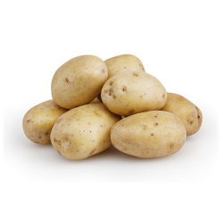 potato-new-m