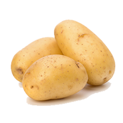 potato-new-l