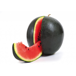 watermelon-black