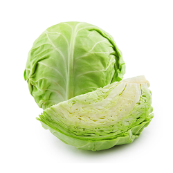 cabbage-big